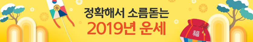 2019 데일리 신 토정비결